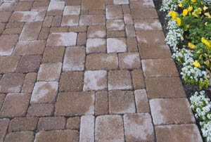 This picture shows paving contractors San Diego. Different block shapes with beautiful contrast with garden